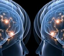 Htmlmade for Neurones miroir
