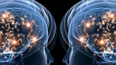 Etude sur l'influence du pouvoir sur l'empathie
