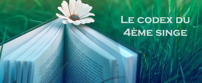 codex-4eme-singe