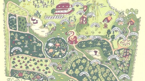 La «bible» de la permaculture en PDF