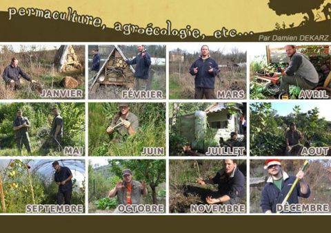 Le jardin permacole, mois par mois.